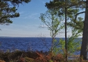 land-for-sale-near-water-grand-lake
