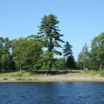 land-for-sale-near-water-grand-lake-nb